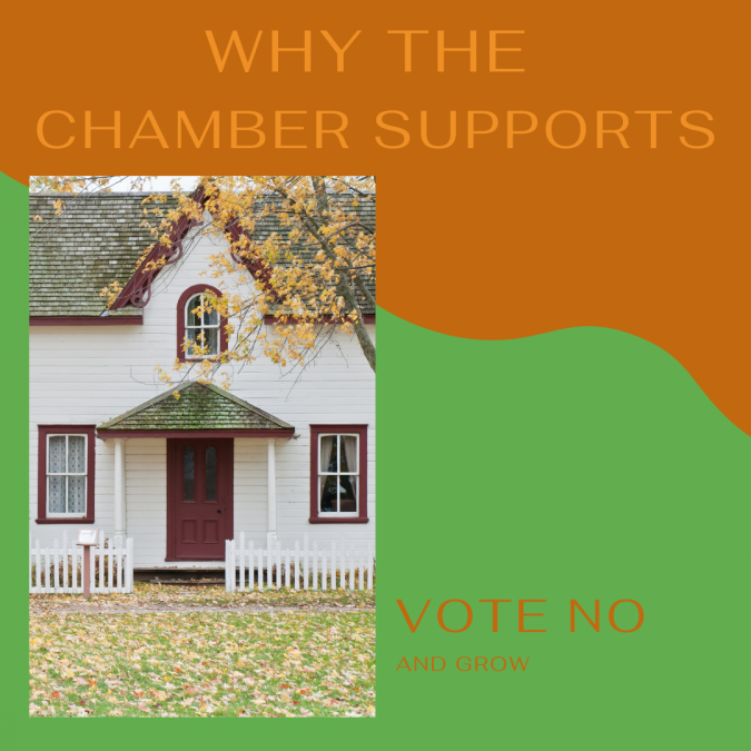 "Why the Chamber supports ""Vote NO and Grow"""