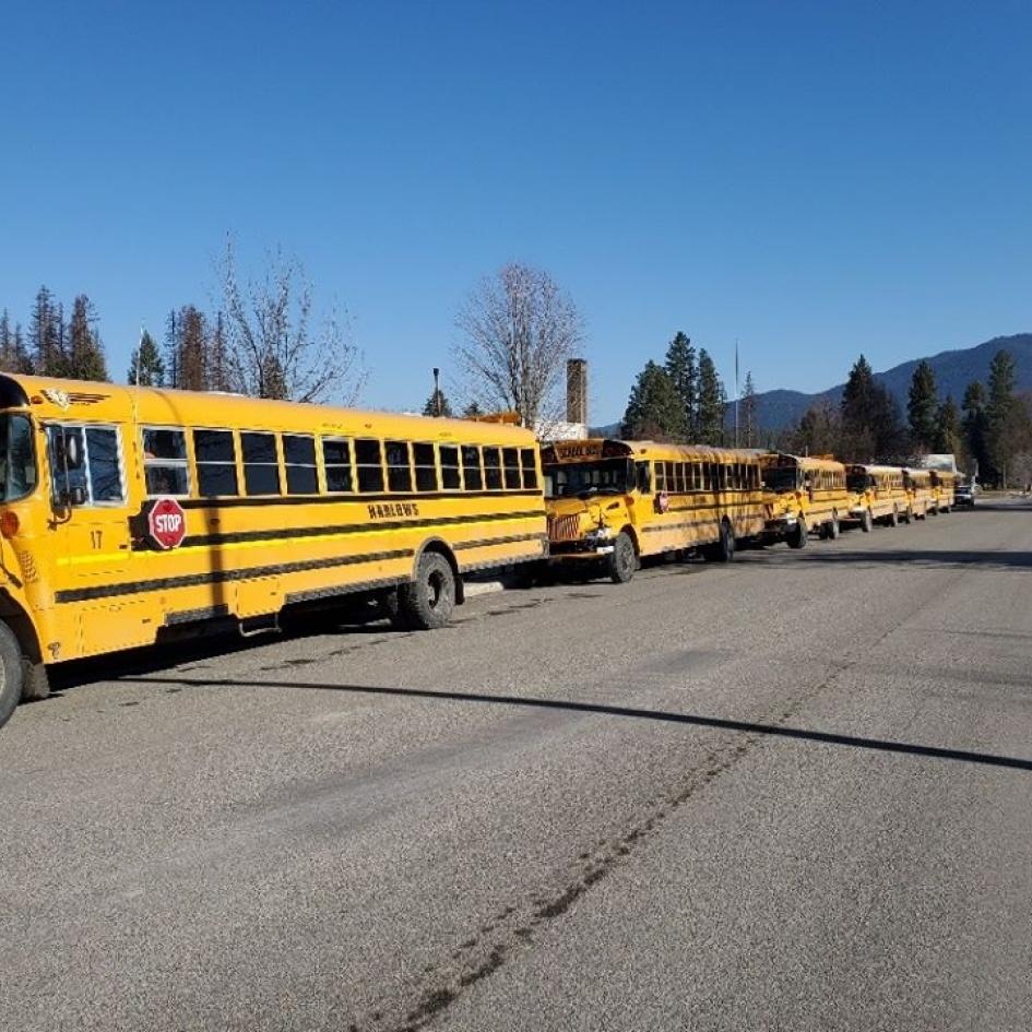 Harlow's School Bus Service Photo