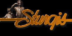Downtown Sturgis Foundation Logo