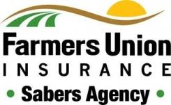 Sabers Agency Inc Logo